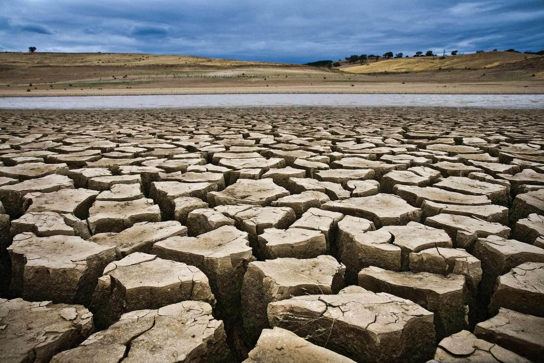 How To Prepare For A Drought